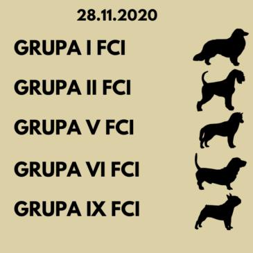 28.11.2020 Przegląd kwalifikujący do hodowli (grupy: I, II, V, VI, IX)